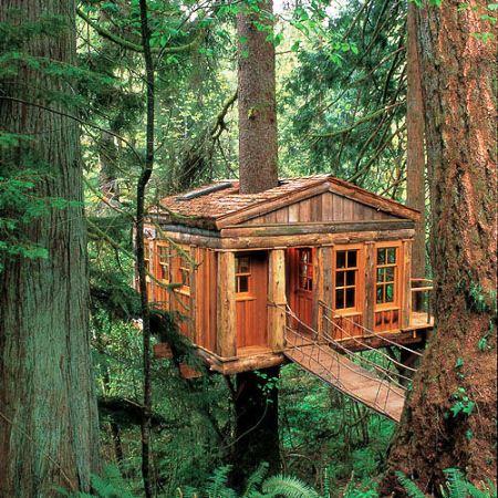 Treehouses - www.myLusciousLife.com - Treehouses