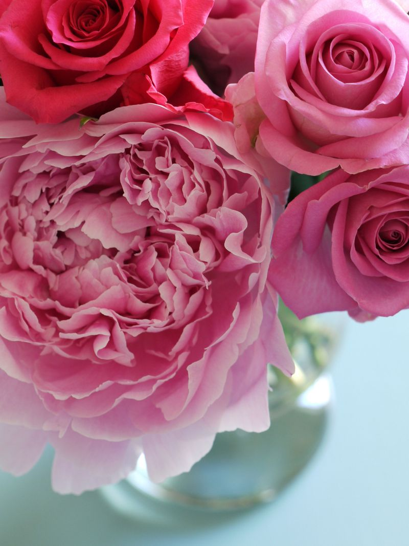 Vase of pink peonies and roses