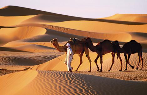 In the desert - mylusciouslife.com - Algeria - man with camels