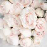 Romance and sensuality - mylusciouslife.com - pretty pale pink flowers