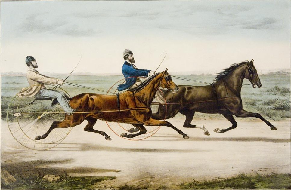 Trotters-racing - vintage print drawing