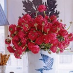 Dark pink anemones in a white vase with blue fish imprint sitting on table