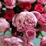 Vase of pink peonies and roses for inspiration