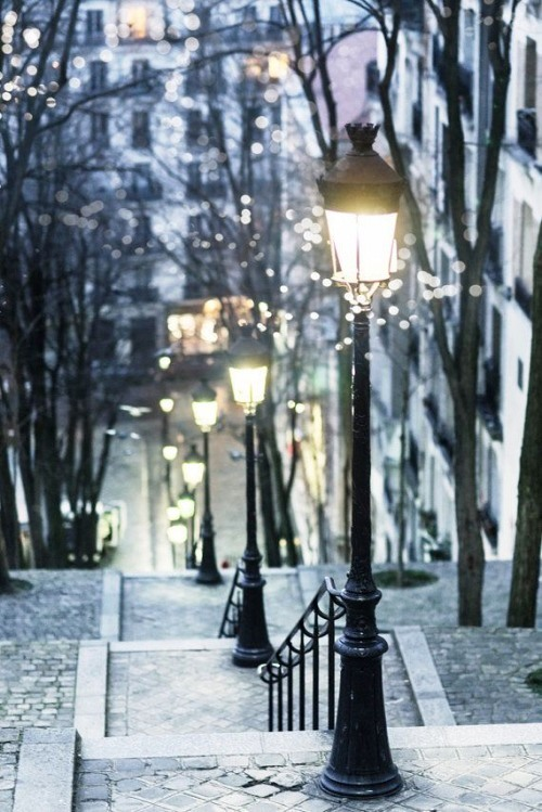 Luscious travel - beautiful street lamps in Paris