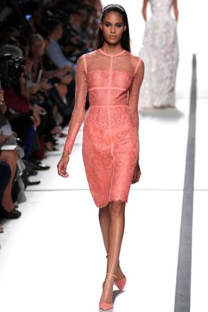 Elie Saab Spring 2014 RTW Collection6.JPG