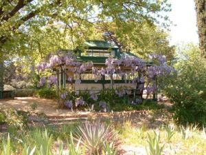 The tennis pavilion wisteria at Buda Historic Home and Garden Castlemaine.jpg