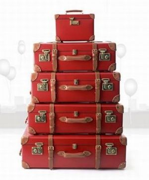 Vintage luggage - mylusciouslife.com - vintage inspired luggage collection by jcrew.jpg