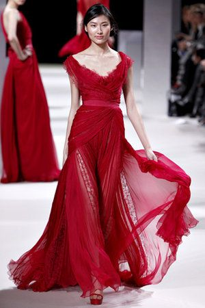 elie-saab-spring-2011-hc-pink-lace-panel-gown-profile.jpg