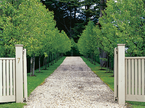 Tree Lined Driveway Driveways And Entrances Curb Eal